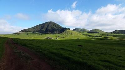 Tour our pastures.jpg